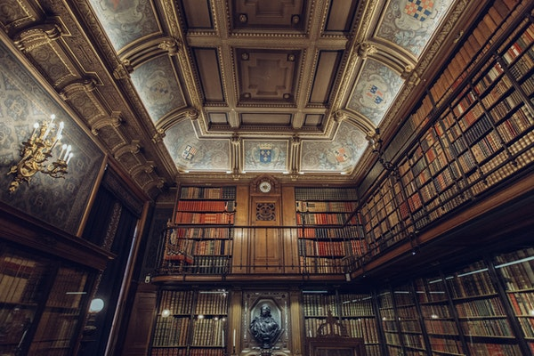Elaborate coved ceiling and coffered ceiling in a library.