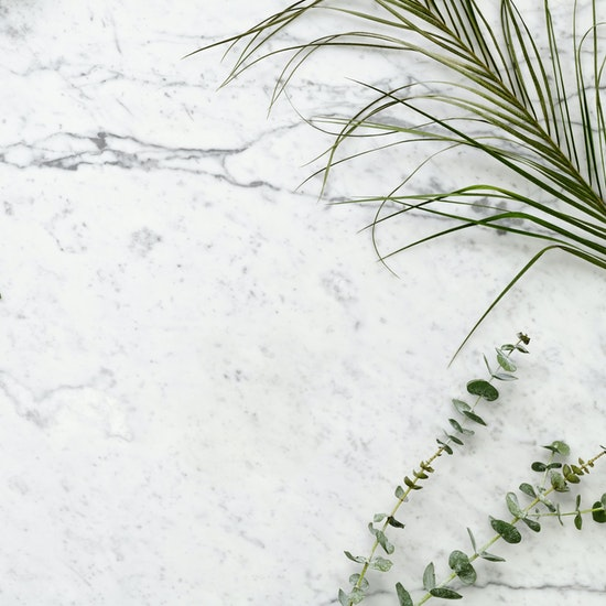 Marble counter with green leaves