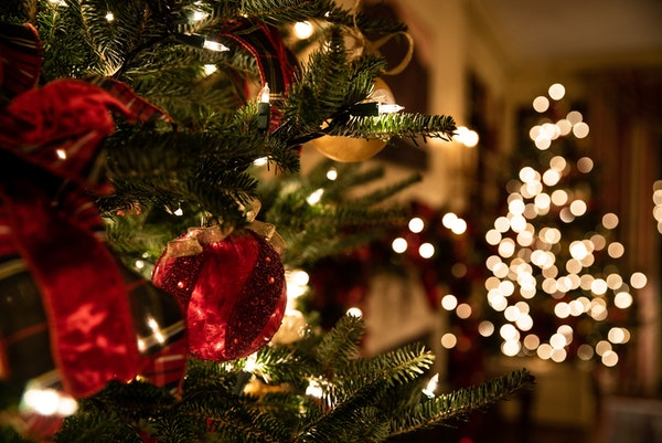 Christmas-tree-up-close-and-in-distance-inside-home.jpg